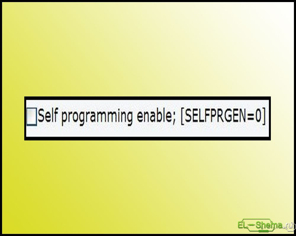 selfprgen